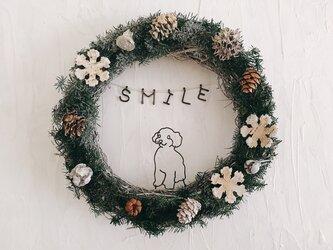 トイプードルの SMILE スノーフレークリースの画像