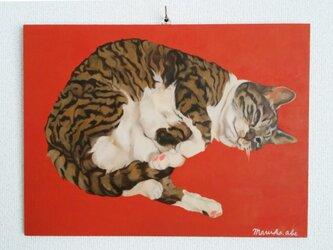猫ごろん(ぐりこ)原画の画像
