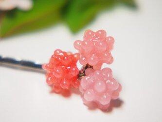 こんぺいとうのヘアピン ピンク系の画像