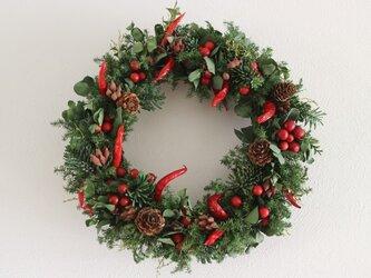 赤い実のクリスマスリースの画像