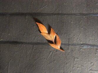 セミオーダー【秋】の画像