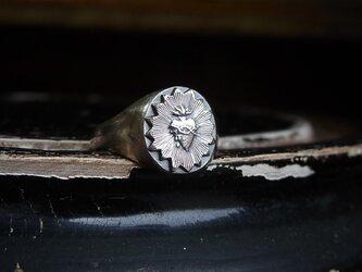 聖心のリング SVの画像