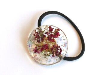 本物のお花 赤そばの花のヘアゴムの画像