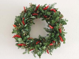 小さな蕾をつけたクリスマスリースの画像