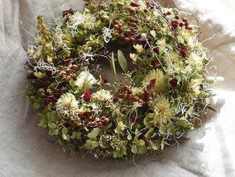 森のクラッシックリース*白樺小枝をあしらって・・・の画像