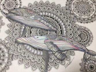 原画 肉筆 一点もの ボールペンアート  鯨 クジラ くじら  百貨店作家 人気 ボールペン画 絵画の画像