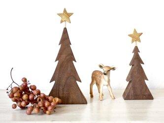 小さな木のクリスマスツリーの画像