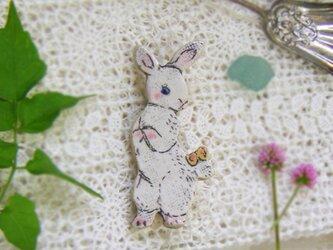 しっぽに蝶々ウサギちゃんの画像