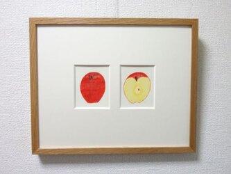 リンゴをはんぶんこの画像