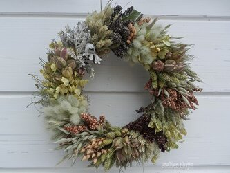 八ヶ岳〜直径26cm雑穀のWreath1の画像