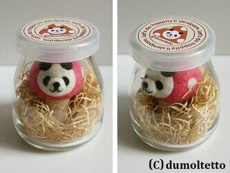 羊毛フェルトキノコパンダのマスコット(ピンク):ヨーグルト瓶入りの画像