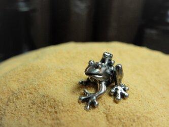親子蛙の画像