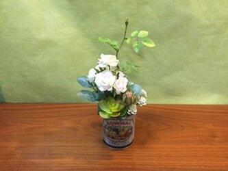 多肉植物とミニバラのコラボの画像