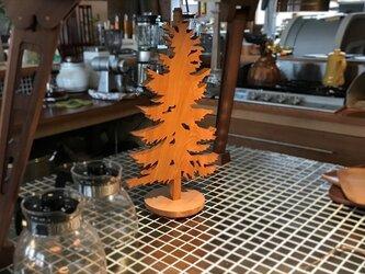 【送料無料】wood Tree 外枠付き! 天然無垢材・『ケヤキ』材 木のオブジェ his-355の画像