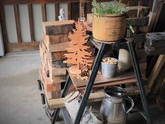 【送料無料】wood Tree 外枠付き! 天然無垢材・『桂』材 木のオブジェ his-255の画像