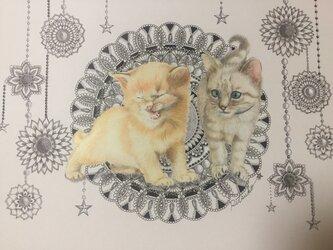 原画 肉筆 一点もの ボールペンアート 猫 小猫 ネコ ねこ 百貨店作家 人気 ボールペン画 絵画の画像