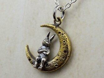 Thinking Rabbit (sv+brass)の画像