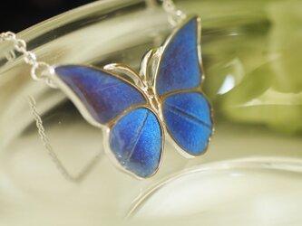 モルフォ蝶のペンダント(まっすぐ)Silverの画像