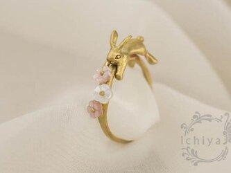 花うさぎリング 白蝶貝、ピンクシェル、真鍮製の画像