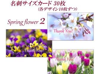 春の花 2  名刺サイズサンキューカード   30枚の画像