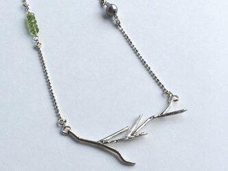 silver 枝のネックレスの画像
