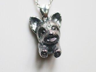 ヨークシャテリアの犬ネックレスの画像