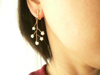 天然石 星に願いを・・・小枝のイヤリングの画像