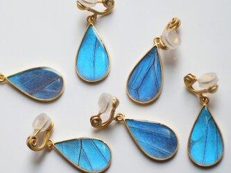 モルフォ蝶のはね雫イヤリング(ペア)アンティークゴールドの画像