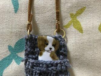 七宝 犬 ピンバッチネックレス キャバリアの画像