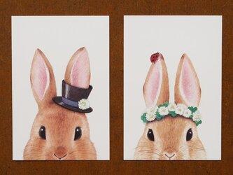 うさ耳ハット/花冠 ポストカード2枚セットの画像