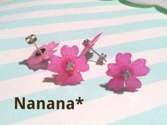 Flower*ピンクのバーベナピアスの画像
