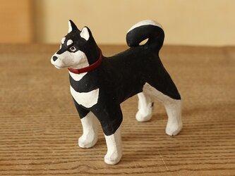 干支の犬 黒柴の画像
