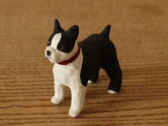 干支の犬 ボストンテリアの画像