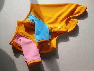 犬服 K様オーダーメイド品:ポインター用Tシャツ2枚セットの画像