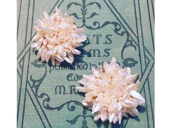 白い小花のブローチの画像