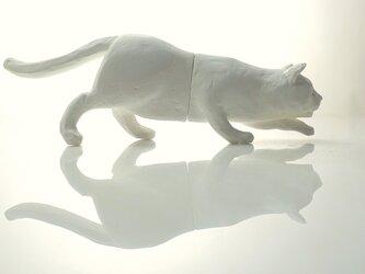 """〝伸び猫・C""""の画像"""