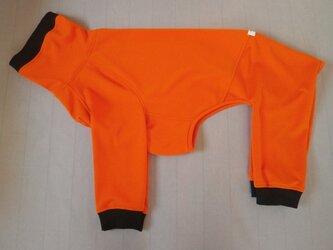犬服 F様オーダーメイド品土佐犬用フルスーツ オレンジの画像