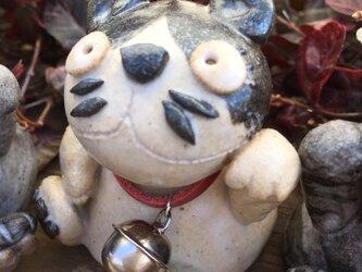 【開運!】招き猫(エキゾチックショートヘア)の画像