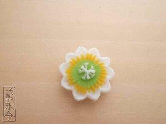 帯留 黄・黄緑色ひげの時計草の画像