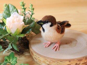 羊毛フェルト 小さな野鳥(仔スズメのみ)の画像