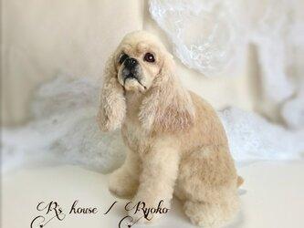 羊毛フェルト アメリカン コッカー スパニエル / 犬 人形の画像