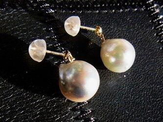 大粒バロックのアコヤ真珠のピアス(K18YG)の画像