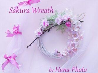 はんなり桜のリース リース台:15㎝ (121) の画像