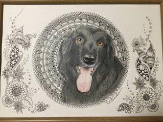 原画 肉筆 一点もの ボールペンアート フラットコーテッドレトリバー  額装付き 百貨店作家 ボールペン画 絵画 犬の絵の画像