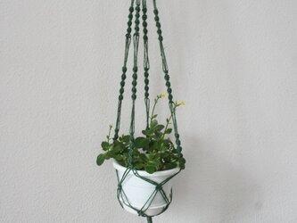 マクラメ編みプラントハンガー / ウッドリングと緑のジュートラミー(麻ひも)での画像