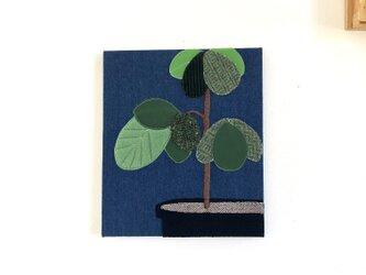 ファブリックパネル ゴムの木の画像