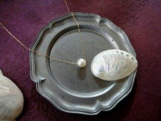 【コフレセット】淡水パールのスライドネックレス ■長小豆チェーン ■ 小さな貝殻の画像