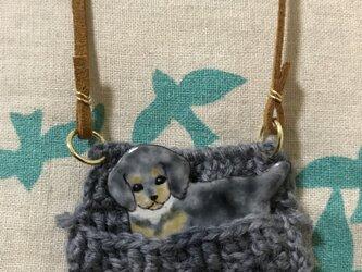 七宝 犬 ピンバッチネックレス ダックスの画像