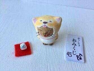 【新春福袋】今年こそ干支になりたい猫さん 茶トラの画像
