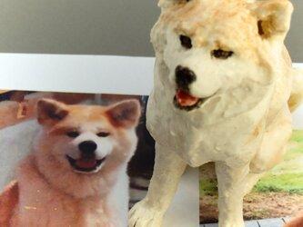 秋田犬(うちの子オーダー参考)の画像